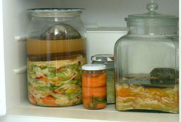 Rezept kimchi selbst gemacht so geht das