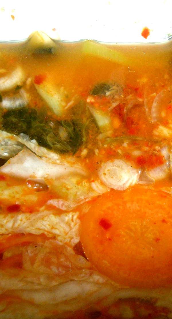 Kimchi, selbst gemacht, frisch eingelegt